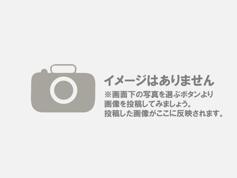大人になった明里が東京行きの乗り換えで待つホーム/小山駅13番ホーム. 秒速5センチメートル