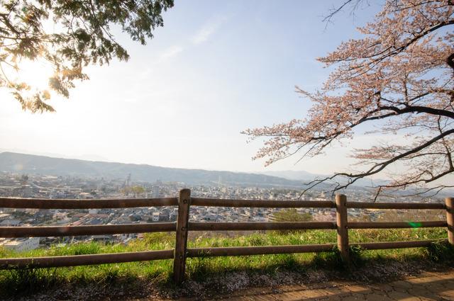 あの花羊山公園.jpg